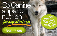 2012_09sept_e3_canine