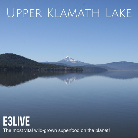 Upper KLamath Lake pic for sm